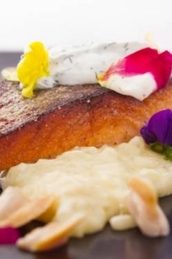 801 Fish - Leawood Seafood Restaurant - Seafood Restaurant in Leawood